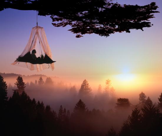 Tree Camping Elk California  / LOUIE PSIHOYOS
